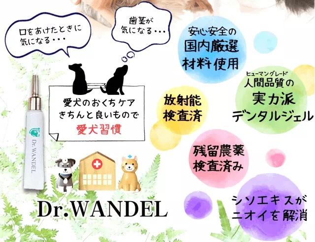 ドクターワンデルは実店舗のペットショップで市販してる?最安値価格で買うには?
